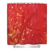 Dancing With Fire Rainbow Soul Collection Shower Curtain