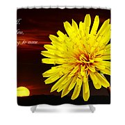 Dandelion Against Sunset With Inspirational Text Shower Curtain