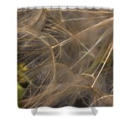 Dandelion Eighty Three Shower Curtain