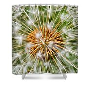 Dandelion Explosion Shower Curtain