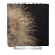 Dandelion Fifty Seven Shower Curtain