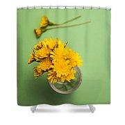 Dandelion Flower Clippings Shower Curtain
