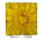 Dandelion Flower Macro Shower Curtain