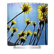 Dandelion Forest Shower Curtain