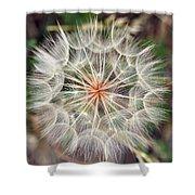 Dandelion Fuzz Shower Curtain