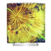 Dandelion Harvest Shower Curtain