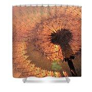 Dandelion Illusion Shower Curtain