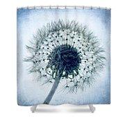 Dandelion In Blue Shower Curtain