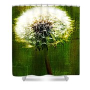 Dandelion In Green Shower Curtain