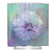 Dandelion In Pastel Shower Curtain