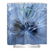 Dandelion Macro Shower Curtain