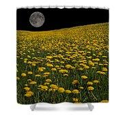 Dandelion Moon Shower Curtain