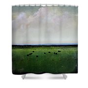 Dandelion Pastures Shower Curtain by Toni Grote