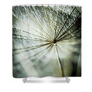 Dandelion Petals Shower Curtain