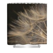 Dandelion Twenty Shower Curtain