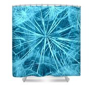 Dandelion Twenty Seven Shower Curtain