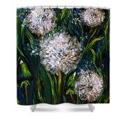 Dandelions Acrylic Painting Shower Curtain