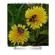 Dandelions And Bees Shower Curtain