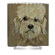 Dandie Shower Curtain