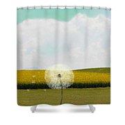 Dandy Day Shower Curtain