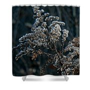 Dandy Dry Shower Curtain