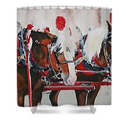 Dandy Duo Shower Curtain