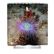 Dangerous Underwater Flower Shower Curtain
