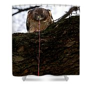 Dangling Dinner Shower Curtain
