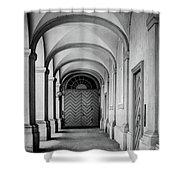 Danish Vault Shower Curtain