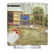 Dan's Chickens Shower Curtain