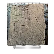 Danzantes Stone Carving Shower Curtain