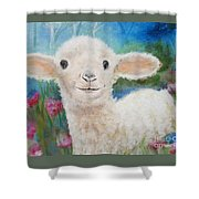Daphne Star's Ears.   Flying Lamb Productions  Shower Curtain