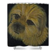 Dapper Dog  Shower Curtain