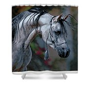 Dappled Grey Shower Curtain