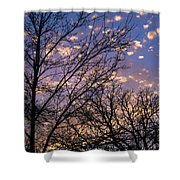 Dappled Sunset-1547 Shower Curtain