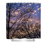 Dappled Sunset-1547 Shower Curtain