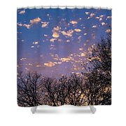 Dappled Sunset-1548 Shower Curtain