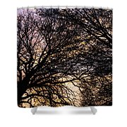 Dappled Sunset-1550 Shower Curtain
