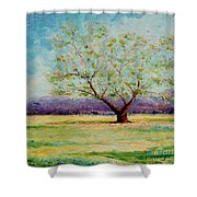 Dapples Apple Tree II Shower Curtain