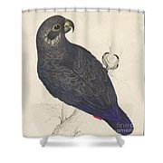 Dark Blue Parrot Shower Curtain