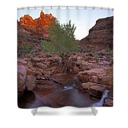 Dark Canyon Creek Shower Curtain