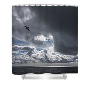 Dark Cloud Shower Curtain