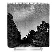 Dark Forest Night Light Shower Curtain
