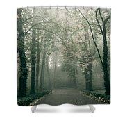 Dark Gloomy Alley In Woods Shower Curtain
