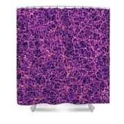 Dark Matter Distribution Shower Curtain by Volker Springel and SPL and Photo Researchers