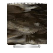 Dark Mystery Shower Curtain