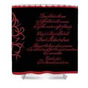 Dark Nights Bright Days Wedding Invitaion Shower Curtain