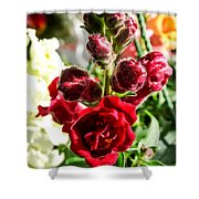 Dark Red Fancy Snapdragon Shower Curtain