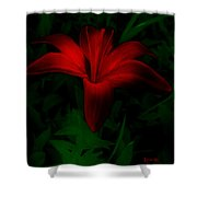 Dark Star Shower Curtain