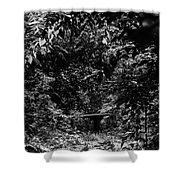 Dark Summer Woods Shower Curtain
